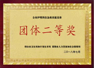 团体二等奖
